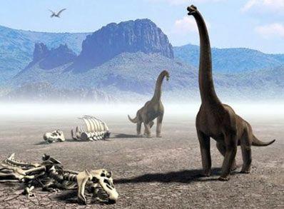 104054-dinoszaurusz-d0000327165f8f0353bf7.jpg